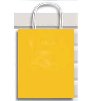Gift Bag (XS) Canary Yellow